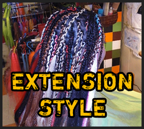 EXTENSION STYLE